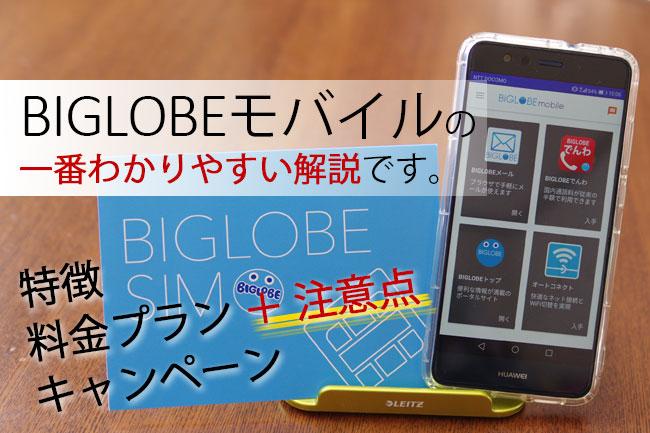 BIGLOBEモバイルの一番わかりやすい解説です。
